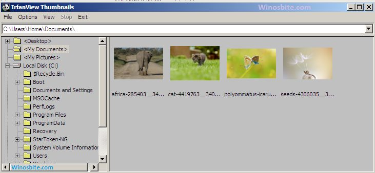 Функция эскизов в программе Irfanview
