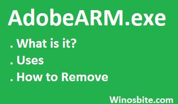 Информация об AdobeARM.exe