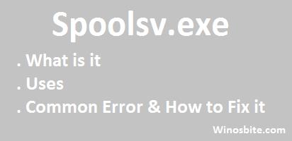 Spoolsv.exe