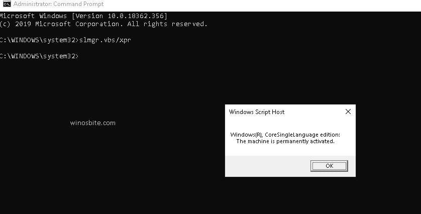 Введите команду slmgr.vbs / xpr Windows Script Host