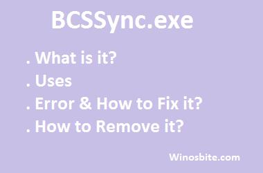 Информация о BCSSync.exe