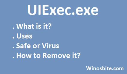 Информация о файле UIExec.exe