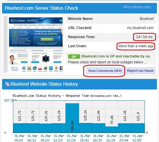 Статус простоя сервера Bluehost