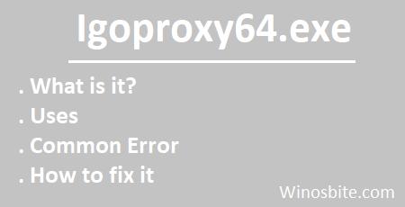 Информация о приложении Igoproxy64.exe