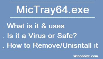 mictray64.exe информация о процессе