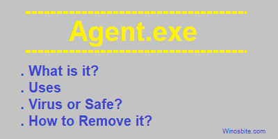 Agent.exe
