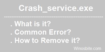 Crash_service.exe