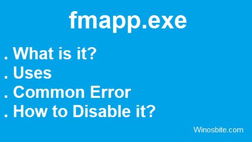 приложение fmapp.exe