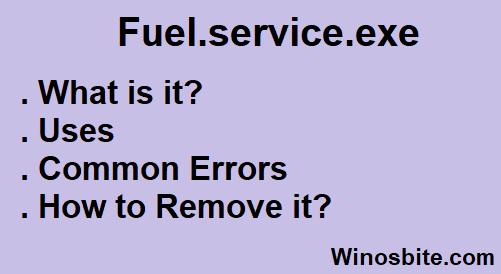 Fuel.service.exe