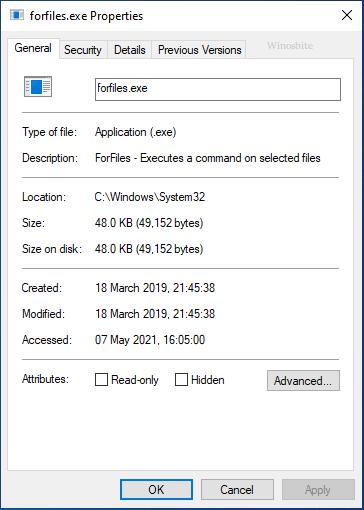 файл forfiles.exe